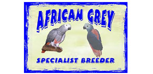 cropped-Roodepoort-Rocci-Chamber-Of-Commerce-Industry-Africangrey Breeders and Exporters Logo